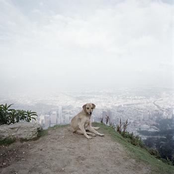Alec Soth, Untitled 02, Bogotá, Chromogenic Color Print, 2002. Courtesy the artist.