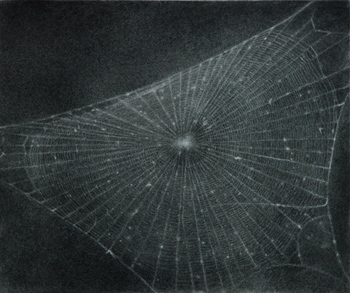 "Vija Celmins, ""Web #1"" (1999). Courtesy Scottish National Gallery of Modern Art."
