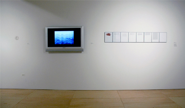 Constant Dullaart, (left to right) .tits + .ass, Waving Ocean, and Translating Phaedrus. Image Courtesy of Gallery 400