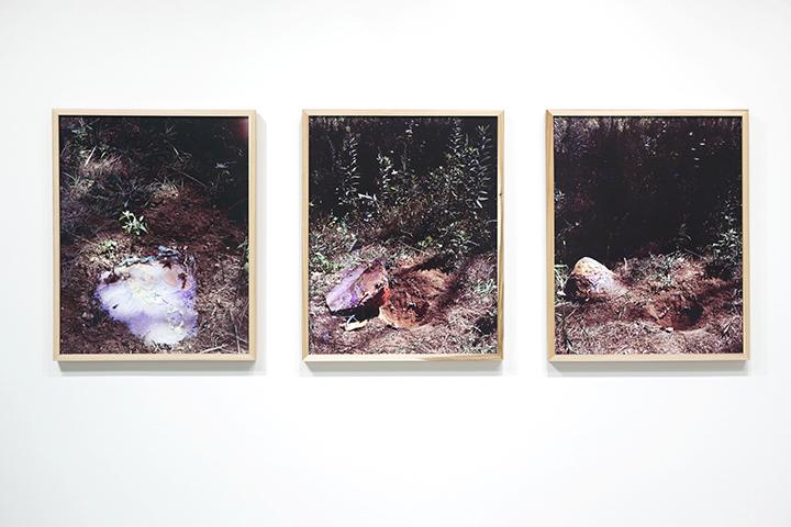 Norton_Triptych_Hole