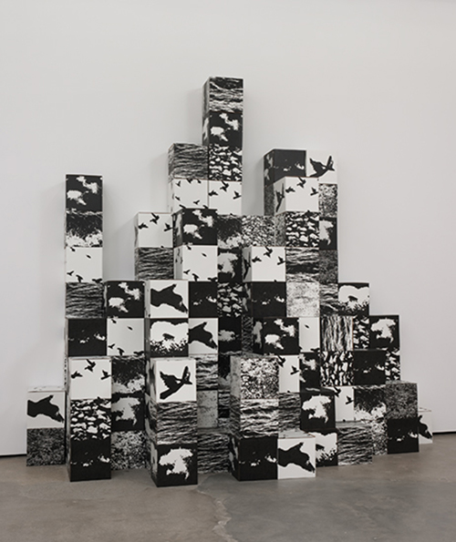 Michael de Courcy, untitled, 1970-2011. Photoserigraph and corrugated cardboard boxes. 12 x 12 x 12 inches each box; overall dimensions variable. Image courtesy of Cherry and Martin.